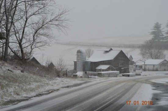 Jan17_Walters Farm Road in Ashe County_Brandon Lemly