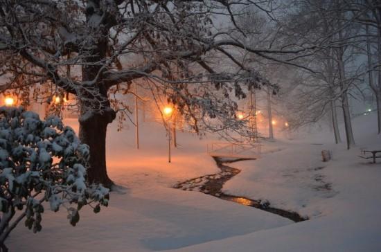 Jan17_West Jefferson Park taken by Leisa Johnson around 8pm