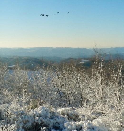Jan18__shot from Ivy Mountain on the Blue Ridge in Deep Gap looking down towards Lenoi_Sheron White Hagelston