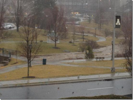 Kraut Creek On ASU Campus _Kara Harmon
