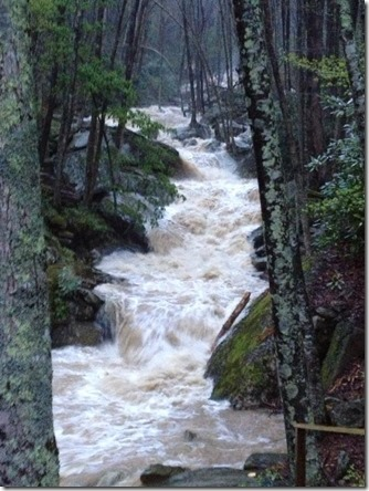May 6_Valley Creek in Seven Devils1_Dan Hugo