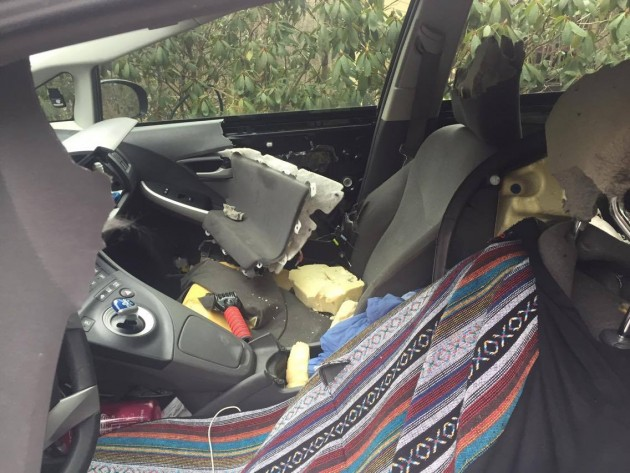 Bear in car7_Christa South