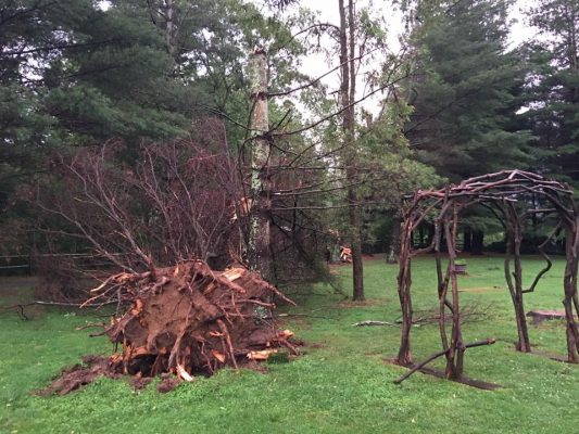 July 9_Valle Crucis Park3_Abby Willis