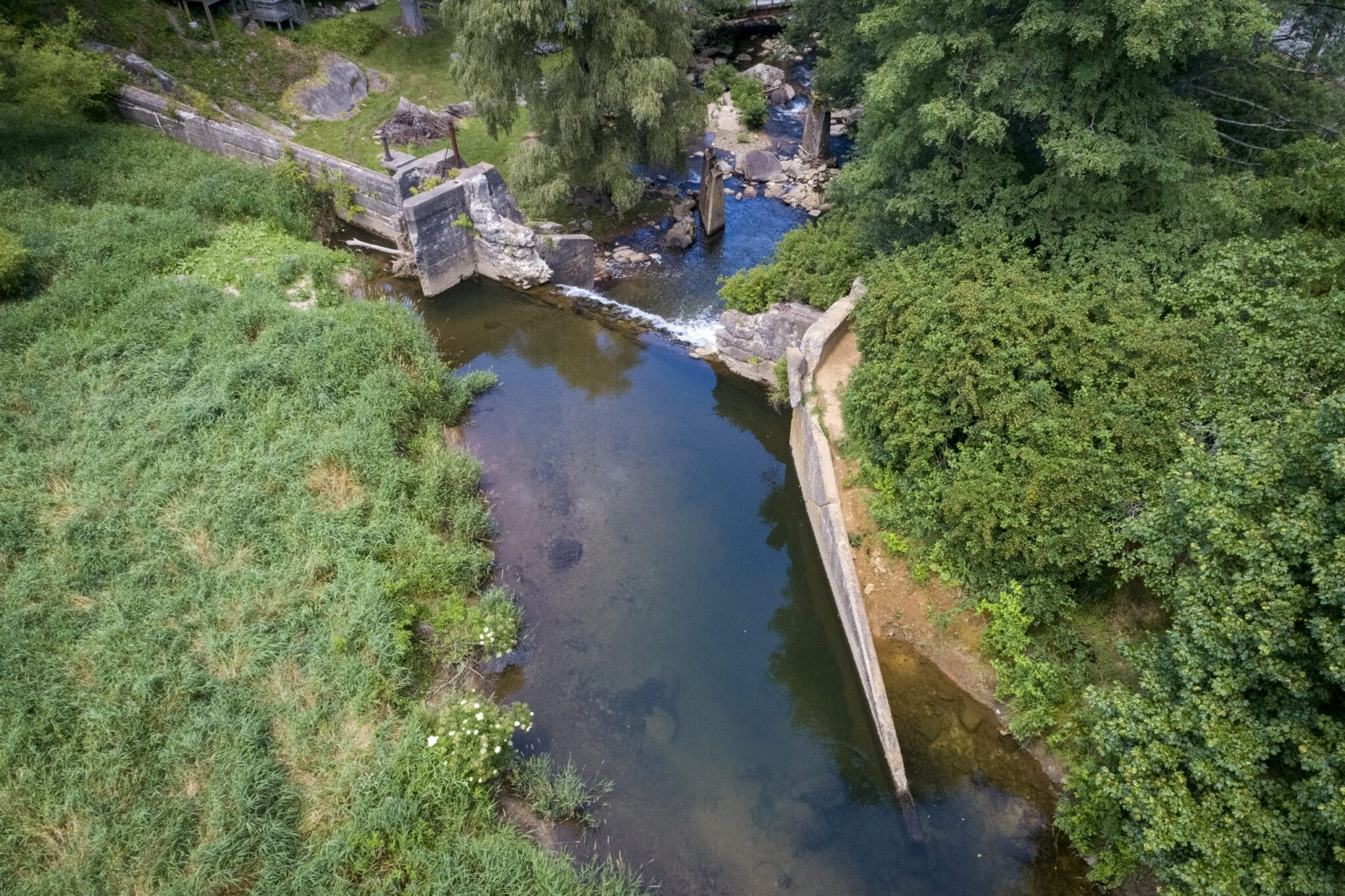 App State's NRLP awarded $1.1M-plus in grant funding for Payne Branch restoration project