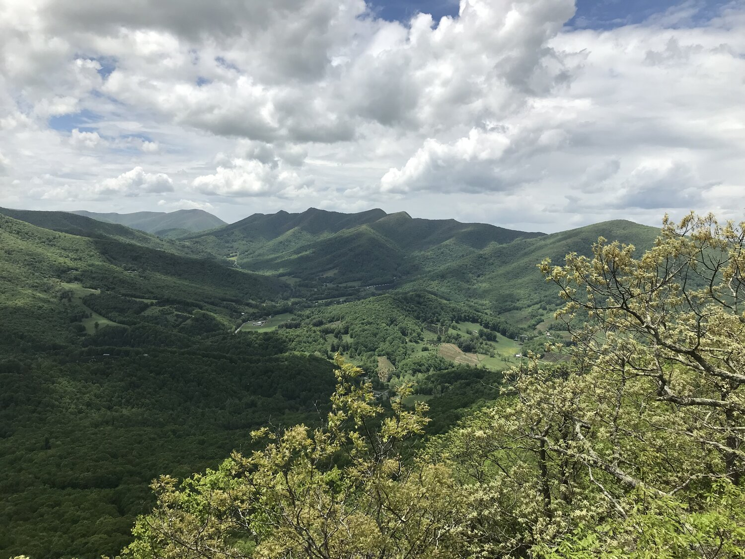 Blue Ridge Conservancy receives $1 Million from the North Carolina Land and Water Fund
