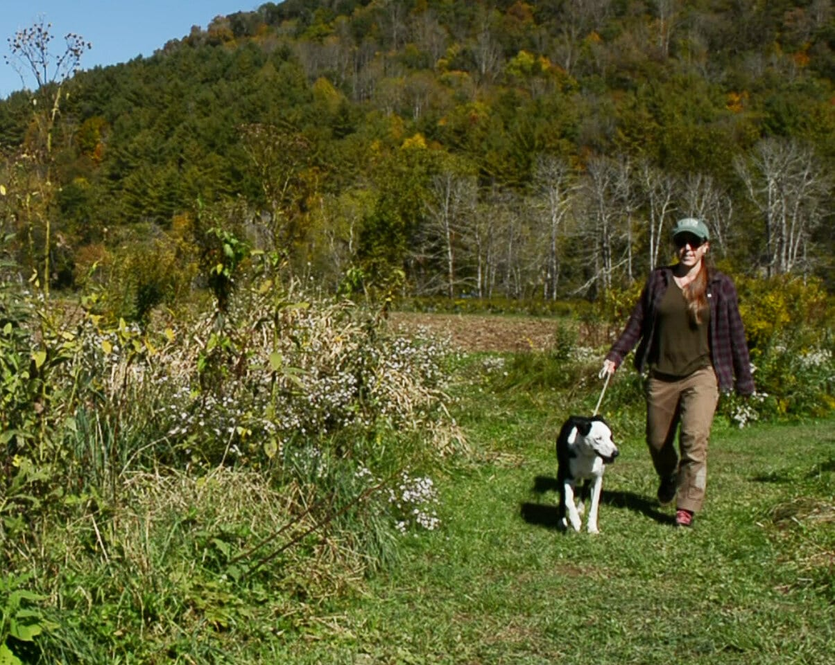 Valle Crucis Park trail extended through Blue Ridge Conservancy farmland