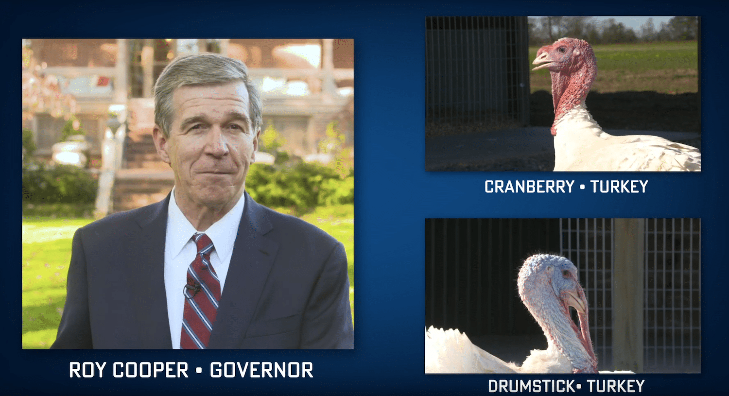 Governor Cooper Wishes North Carolinians a Safe and Happy Thanksgiving, Annual turkey pardoning goes virtual