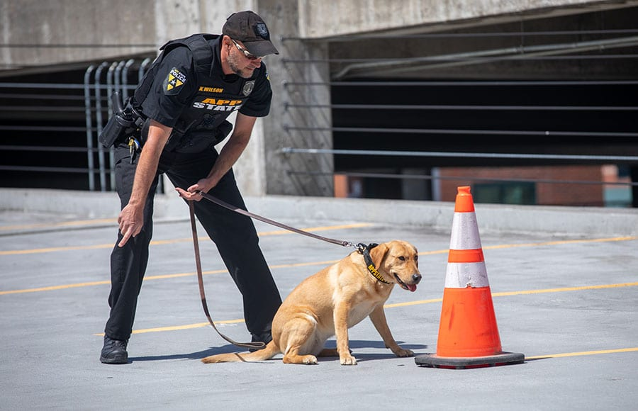 K-9 Yaya puts her nose to work as 1st four-legged Appalachian Police officer