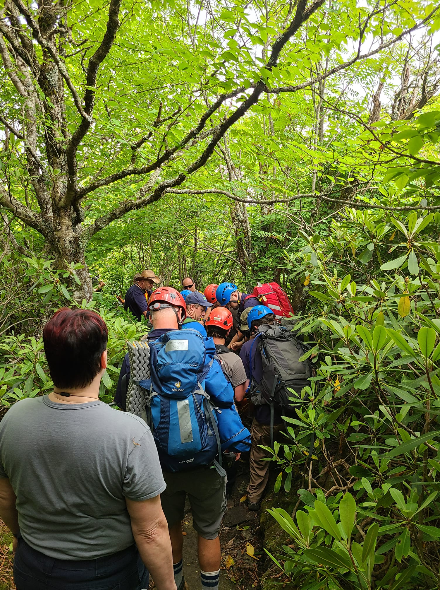 Hiker rescued on a Grandfather Mountain trail Saturday