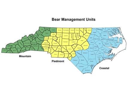 North Carolina's Bear Harvest Increased 8% in 2020
