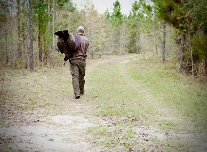 North Carolina Records Second Highest Wild Turkey Harvest