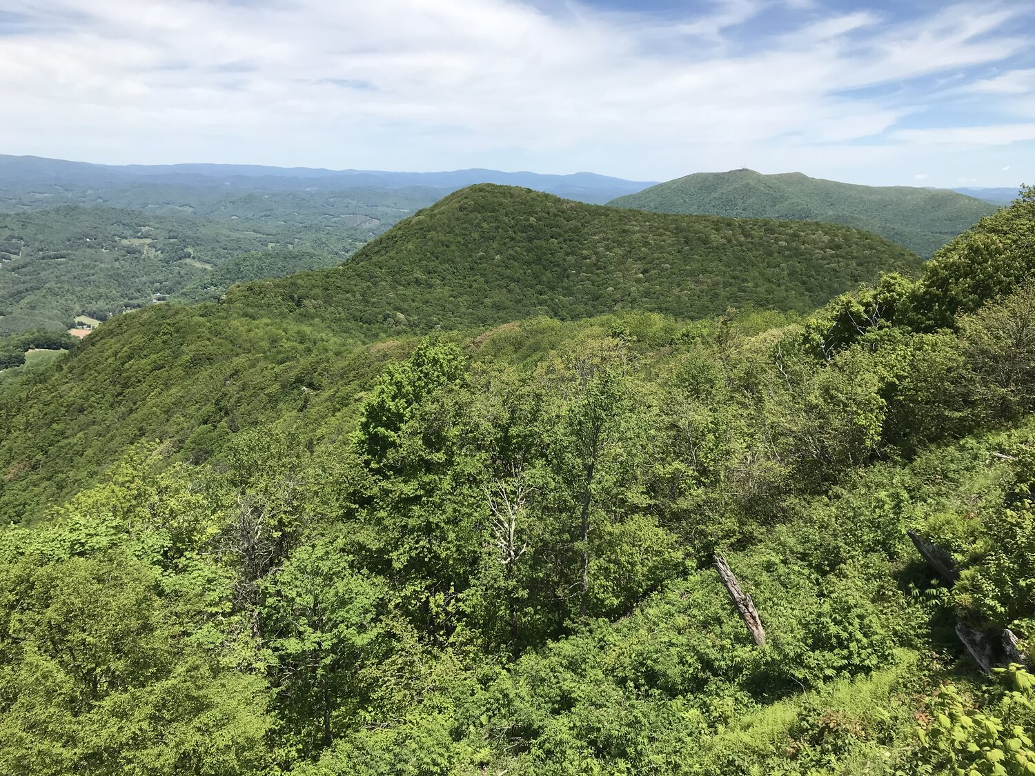 Transfer from BRC to NC Wildlife Resources Commission Expands Three Top Game Lands to 3,100 Acres