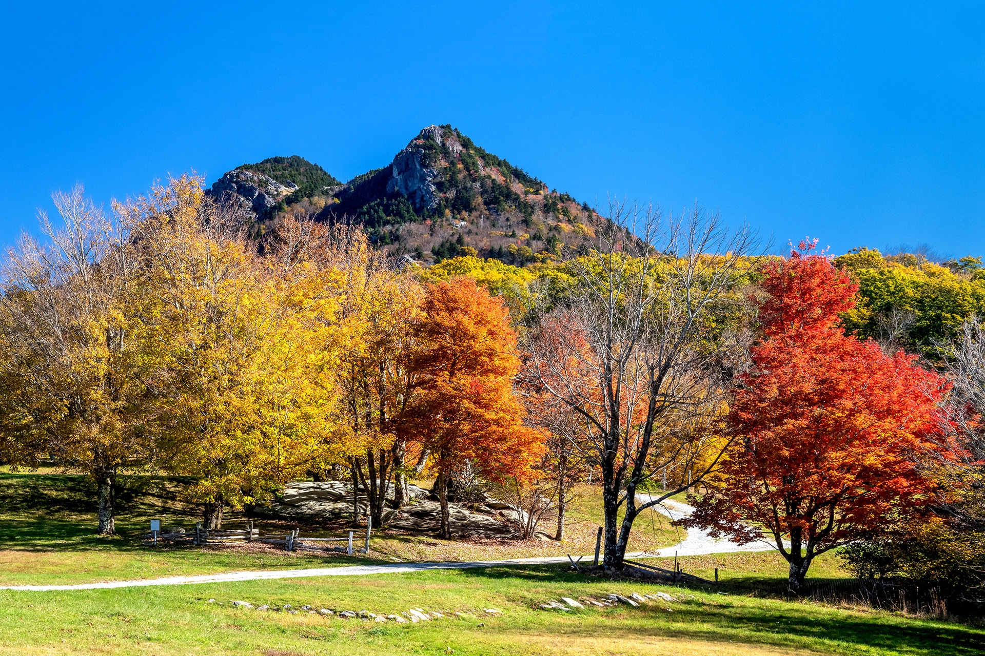 Fall Color Rambles return to Grandfather Mountain