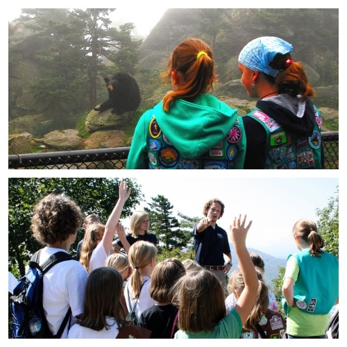 Grandfather Mountain Girl Scout Day returns Sept. 18